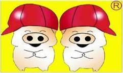 江西双胞胎招聘_双胞胎饲料集团有限公司-赣州人事人才网赣州区域/章贡区